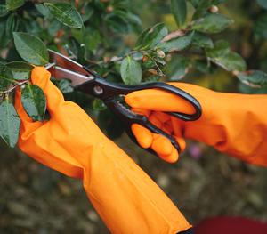FE405 外橘里白工业乳胶手套
