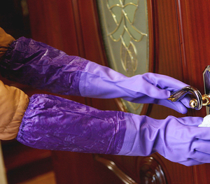 FE609 Household PVC Gloves