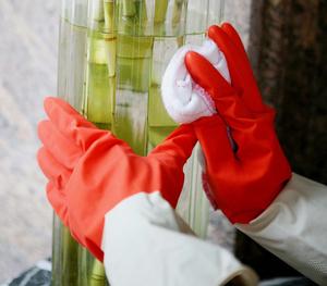 FE201 Bi-color Household Latex Gloves
