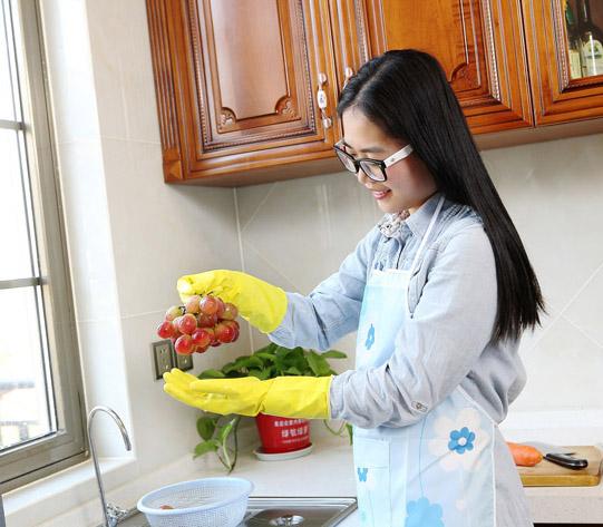 FE104-S Spray flocklined Household Latex Gloves