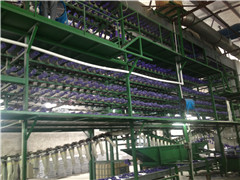 Production lines - 4